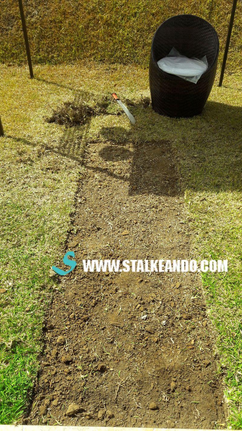 Stalkeando camino de piedras para tu jard n o patio for Casa con un camino