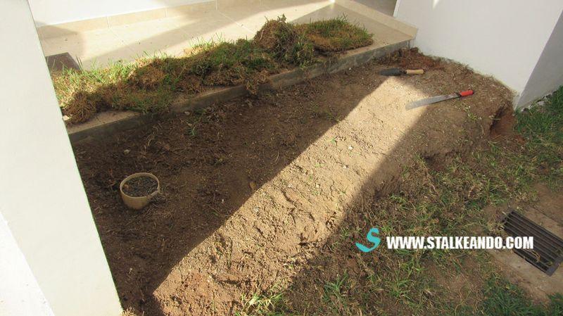 Entradas de jardines casa con jardin with entradas de for Jardin entrada casa