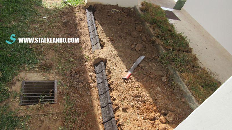 Stalkeando mini jard n para la entrada de la casa for Borde plastico para jardin